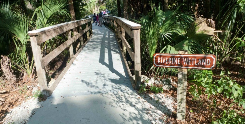 Cape Coral Nature Parks and Preserves